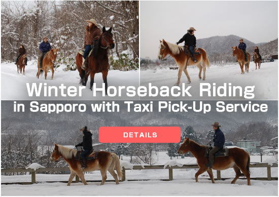 Winter Horseback Riding in Sapporo with Taxi Pick-Up Service