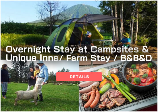 Camping and Farm Stay and B&B&D