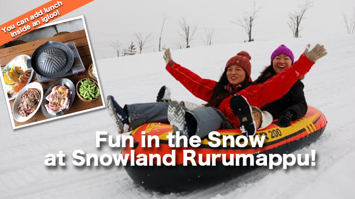 Fun in the Snow at Snowland Rurumappu! with Private Transfer -You can add lunch in an igloo.