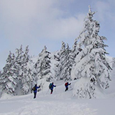 [Furano] Snow Trekking in Mt. Daisetsu / until May